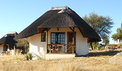 Comfortable, separate thatched bungalows